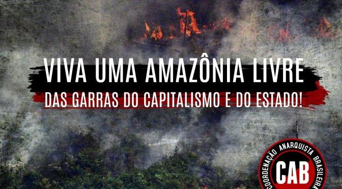 [CAB] Em caso de incêndio queime o latifúndio e o imperialismo: em defesa da Amazônia!